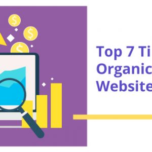 Top 7 Tips to Bring Organic Traffic to Your Website
